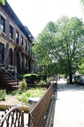 256 Monroe st Bed-Stuy Brooklyn 11216